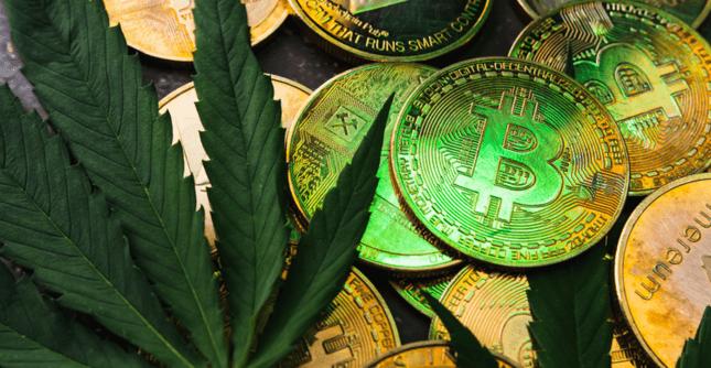 Afbeelding van cryptomunten met een cannabisblad